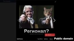 Ukraine's Granny And Cat Meme