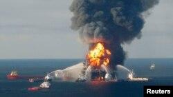 Внаслідок аварії, що сталася 20 квітня 2010 року на нафтовидобувній платформі Deepwater Horizon, у Мексиканську затоку витекло більше 4 мільйонів барелів нафти
