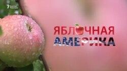 Яблочная Америка