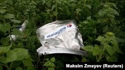 Обломок «Боинга» компании «Малайзийские авиалинии», Донецкая область, июль 2014 года