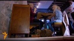 Парижани в захопленні від ідеї пообідати з кішкою