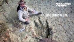 На юге Боливии нашли след гигантского динозавра