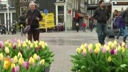 """Холандско """"не"""" за договорот меѓу ЕУ и Украина"""