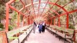 باغ زنانه یگانه مکان امن برای خانمها در کابل.