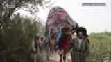 Owgan türkmenleriniň toý däpleri