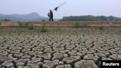 Рыбак идет по берегу высохшего озера в китайской провинции Аньхой. 25 мая 2011 года.