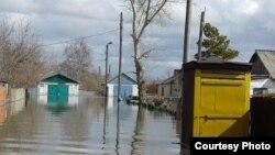 Затопленное село Садовое Бухар-Жырауского района. Карагандинская область, 15 апреля 2015 года.