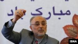 علیاکبر صالحی، رییس سازمان انرژی اتمی ایران.