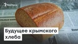 Будущее крымского хлеба | Радио Крым.Реалии