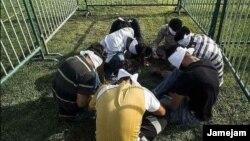 نشان دادن شهروندان افغان که به صورت غیرقانونی در ایران اقامت دارند، در قفس در شیراز