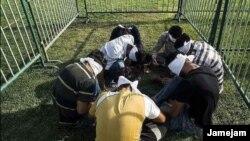 تعداد از مهاجرین افغان که در شیراز ایران در داخل قفس به نمایش گذاشته شده بودند.