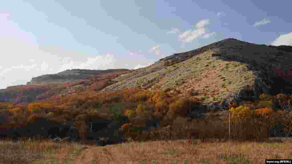 По дороге к Пчелиному открытые участки местности с холмами и балками чередуются с дубовым и буковым лесом. Над ними высоко в небе парят орлы