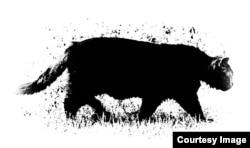Рисунок Матвея Вайсберга для акции #CatsForTundra