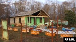 После открытия завода закупаемый у местных производителей мед должны были очищать и сертифицировать