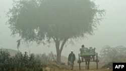A thick fog has severely disrupted both air and road traffic in Pakistan in recent days.
