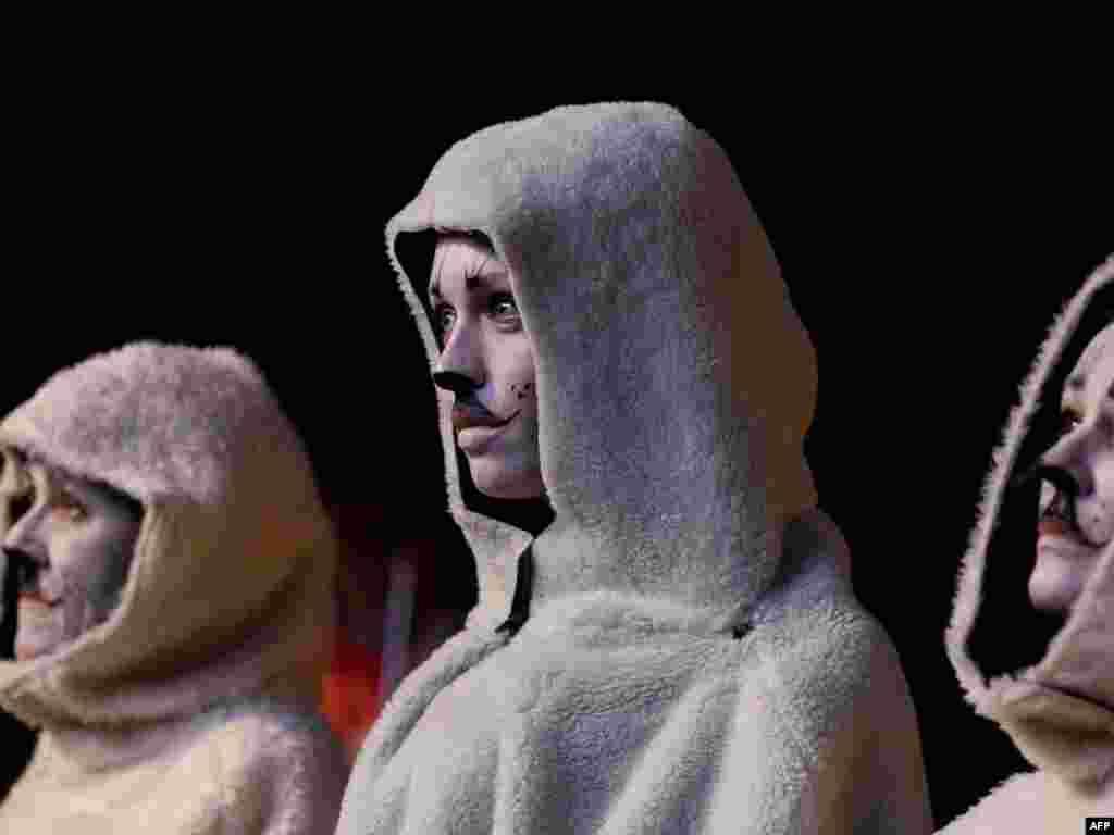 Галяндыя, Гаага: абаронцы правоў жывёлаў пратэстуюць перад канадзкай амбасадай супраць паляваньня на цюленяў.