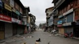 Dogs snooze on a road usually bustling with traffic on August 11 in Srinigar, the main city.