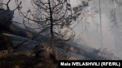ნახანძრალი აბასთუმანში