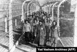 Фотография узников Освенцима в день освобождения.