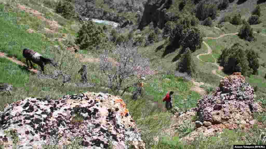 Люди спускаются в каньон Аксу - центральное место в Аксу-Жабаглинском заповеднике.