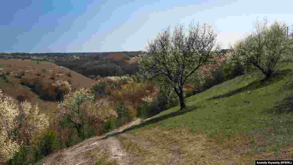 Балка біля села Чистеньке, що веде до живописних гребнів Внутрішньої гряди Кримський гір і печери Зміїної