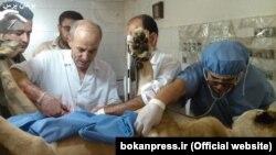 عمل سزارین شیر در شهر بوکان