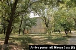 Grădina de la Țibănești, atât de dragă lui P.P.Carp
