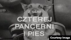 """С этой заставки начиналась каждая серия некогда популярного телефильма """"Четыре танкиста и собака"""""""