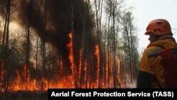 Пожары в Якутии. 2 августа 2021 года
