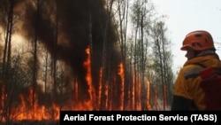 Лесной пожар в Якутии (архивное фото)