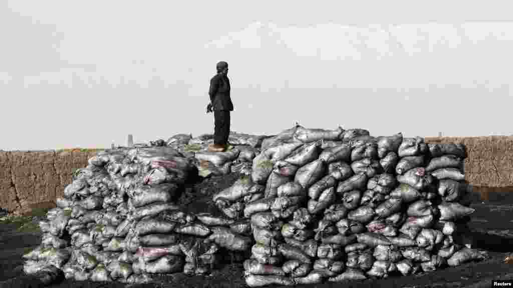A worker takes a break atop sacks containing coal near Bagram highway in Afghanistan on February 29. (Reuters/Erik De Castro)