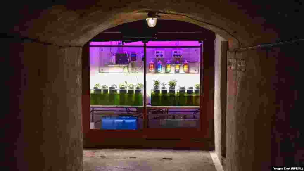 Биологическая станция для гидропонного способа выращивания растений