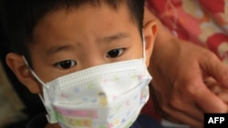 A boy wears a face mask against swine flu as he arrives at Los Angeles International Airport.