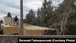 Строительство на месте вырубленного можжевельника