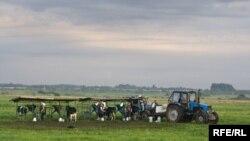 Более 90% сельхозпродукции в Абхазию завозится из России. Фермеры требуют протекционистских мер