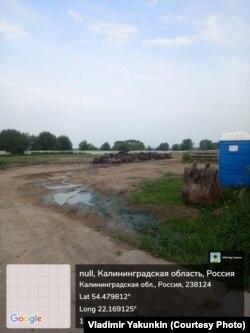 Сваленные на землю туши. Фото Владимира Якунькина