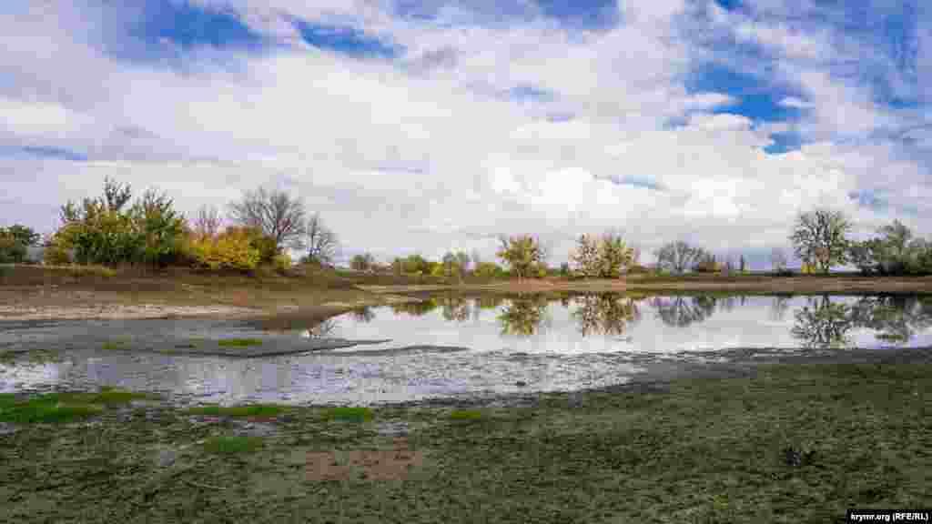 Сільський ставок помітно пересох