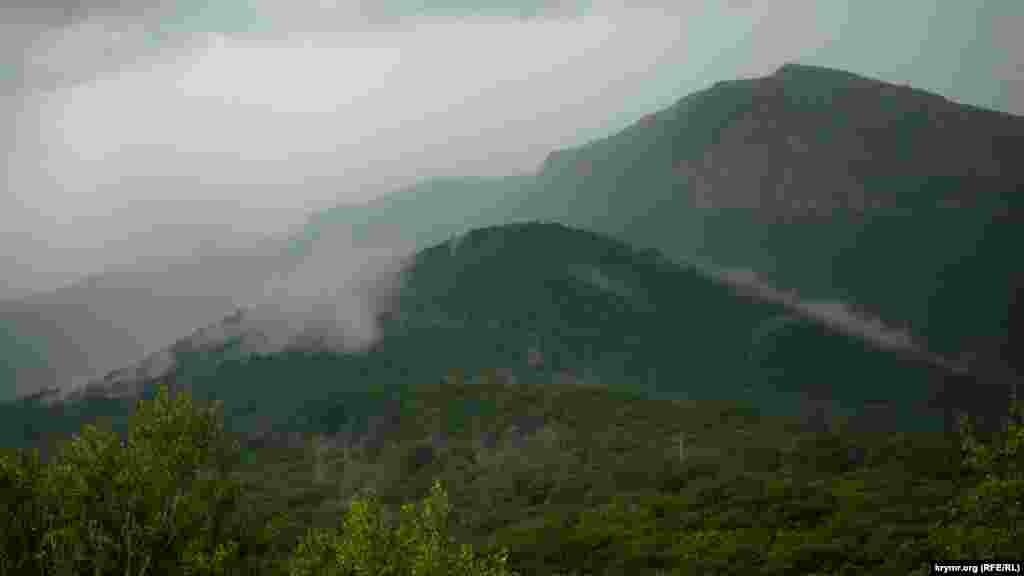 После обеда на Чатыр-Даг обрушился мощный ливень, вынудивший быстро свернуть всю грибную торговлю. Значит, грибов в ближайшие дни не убавится