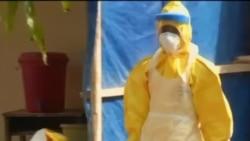 Число жертв эпидемии вируса Эбола превысило 7500