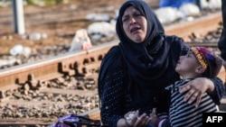 یک پناهجو و فرزندش در مرز مجارستان و صربستان