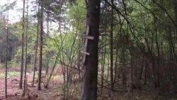 Крыж ад германцаў на магіле рускіх салдатаў