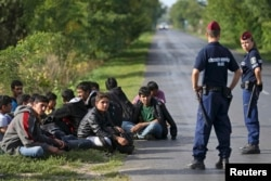 Hungarian policemen detain migrants from Afghanistan after they illegally crossed from Serbia to Hungary near the village of Asttohatolom on September 16.