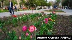 Весна в Симферопольском парке