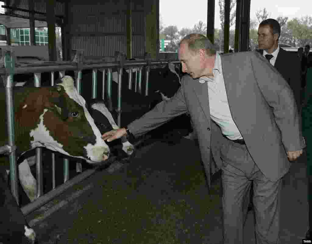 Во время поездки по Белгородской области. Сентябрь 2007 года.