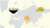Infographics cover photo - Global Hunger Index - KAZ