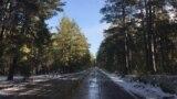 Дорога от курорта Бурабай до села Сарыбулак. Акмолинская область, 30 октября 2020 года.