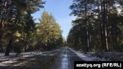 Дорога от курорта Боровое до села Сарыбулак. Акмолинская область, 30 октября 2020 года.