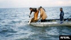Рыбаки в Каспийском море. Иллюстративное фото.