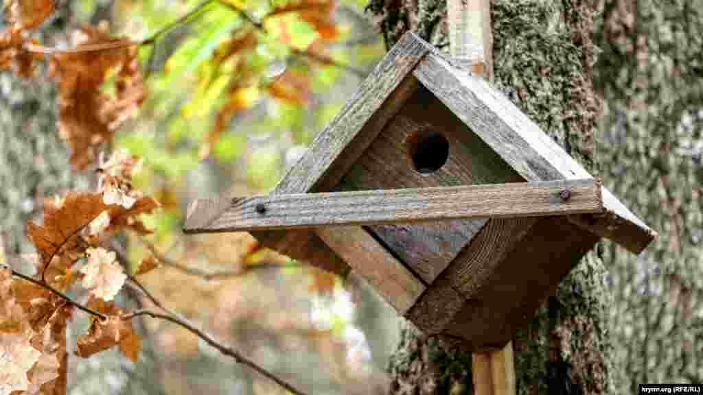 Шпаківня для птахів