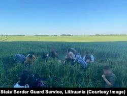 Migrants apprehended in Lithuanian farmland on June 19.